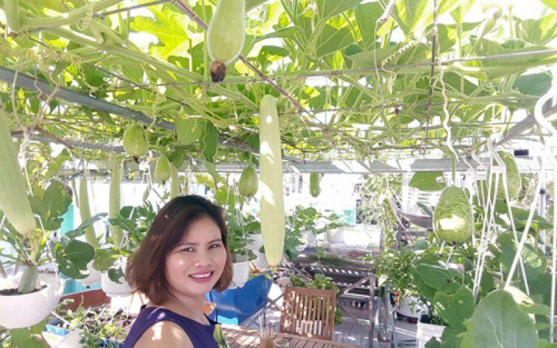 Vườn sân thượng đếm quả mỏi mắt ở Sài Gòn