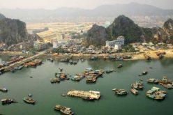 Thuê tư vấn nước ngoài lập quy hoạch đặc khu kinh tế Vân Đồn