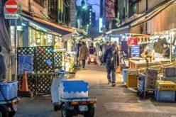 Chợ cá lớn nhất thế giới ở Nhật Bản – nơi bán những con cá triệu USD