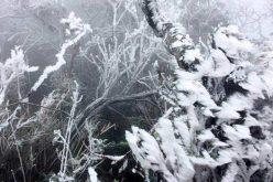 Núi Mẫu Sơn – 1,6 độ C, băng giá phủ dày đặc