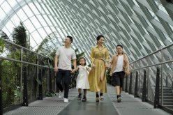 Theo chân gia đình Hoàng Bách khám phá Singapore