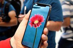Apple không dùng tấm nền OLED của Samsung trong iPhone X 6,5 inch