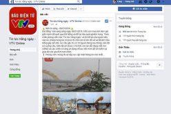 Giả mạo Facebook VTV8 đăng tin thất thiệt về Đà Nẵng