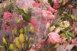 Nghịch lý thị trường hoa: Tâm lý thích hàng ngoại?