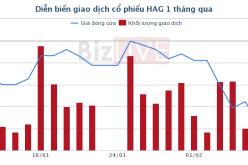 Chứng khoán sáng 12/02: Thị trường tích cực lên, cặp đôi HAG, HNG vẫn bị xả