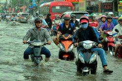 Sài Gòn vỡ đê bao, kẹt xe trong ngày triều cường đạt đỉnh