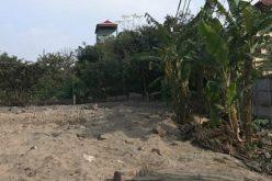 Địa ốc 24h: Ngang nhiên san lấp trái phép đất nông nghiệp tại quận Long Biên