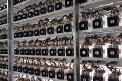 """Công nghệ 24h: Hàng loạt người đào tiền ảo ở Việt Nam bán """"trâu"""" trước Tết"""