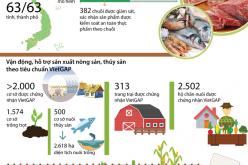 Có hơn 700 chuỗi cung ứng nông lâm thủy sản an toàn