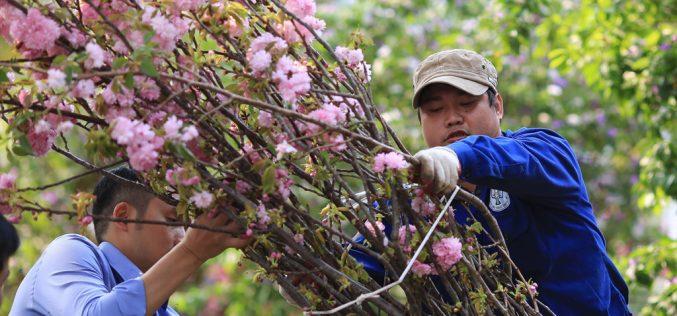 Thế hệ kế nghiệp Việt Nam: Tham vọng phát triển lớn, cơ hội lãnh đạo chưa tương xứng
