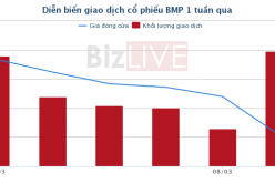 NawaPlastic Industries và một nhà đầu tư cá nhân mua xong 29,5% cổ phần của BMP