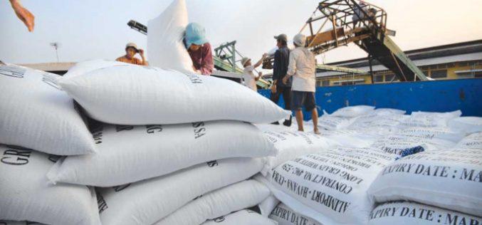 Xuất khẩu gạo khả quan, giá vượt Thái Lan