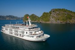 Paradise Việt Nam ra mắt thẻ hội viên Privilege