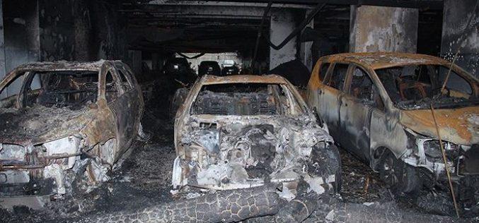 PTI tiếp nhận thông báo tổn thất của 5 khách hàng trong vụ cháy chung cư Carina