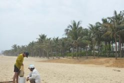 """Bãi biển Đà Nẵng bị """"xẻ thịt"""": Đường của dân thành của resort"""