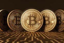Điều tra vụ kế toán dùng hơn 8 tỷ đồng chơi Bitcoin