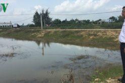 Hàng chục ao nuôi tôm tiền tỷ ở Quảng Nam bị bỏ hoang