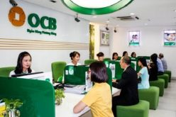 777 nhà đầu tư 'xếp hàng' mua 6,6 triệu cổ phần OCB của Vietcombank