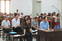 Vụ án Hadico: Cựu Phó giám đốc Sở Nông nghiệp Hà Nội được đề nghị đổi tội danh