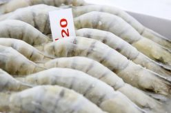Muốn kinh doanh tạm nhập, tái xuất thực phẩm đông lạnh, phải có 10 tỷ đồng