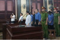 """Vụ xử bà Hứa Thị Phấn: Luật sư """"tung chiêu"""" tại tòa"""