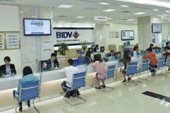 Giá cổ phiếu giảm là tích cực đối với tiến trình tăng vốn của BIDV?