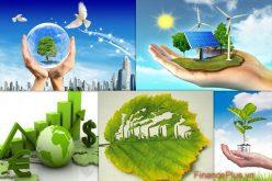 Nộp 100% phí thẩm định báo cáo đánh giá tác động môi trường vào ngân sách