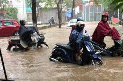 Những nghề bình dân hái ra tiền nhờ… mưa