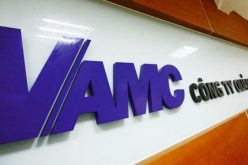 VAMC tự đấu giá khoản nợ của Công ty Bình Lý, giá khởi điểm 46,5 tỷ đồng