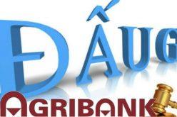 Agribank đấu giá tài sản Công ty Khoáng sản Miền Trung quy mô 207 tỷ