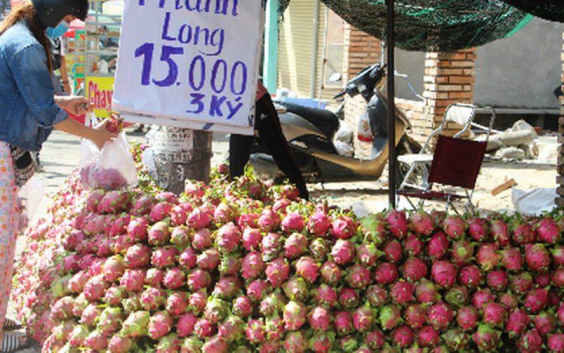Thanh long giá rẻ bán đầy vỉa hè Sài Gòn