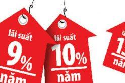 """""""Khả năng trả lãi vay của doanh nghiệp mức 6-9% là phù hợp"""""""
