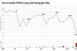 Cổ phiếu Pomina bị bán tháo sau nghi án 100 bánh cocain trị giá 800 tỷ