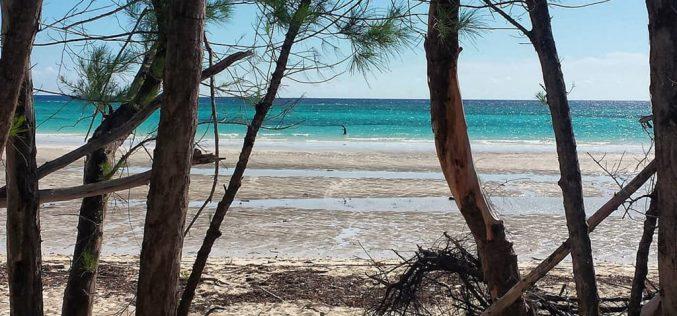 6 điều nên nhớ khi du lịch quần đảo lợn Bahamas vùng Caribbean