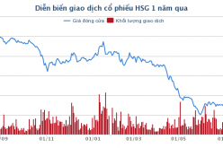 """Em trai lãnh đạo Tôn Hoa Sen giải trình gì về bán cổ phiếu """"chui"""""""
