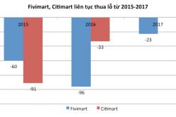 """Doanh thu tăng nhưng Fivimart, Citimart đều báo lỗ sau cái """"bắt tay"""" với đại gia bán lẻ Nhật"""