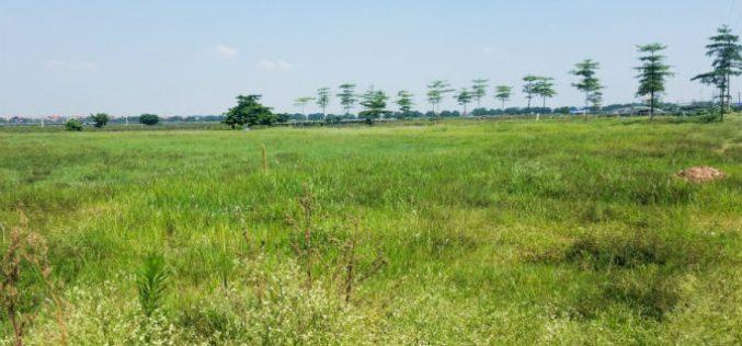 Hà Nội thu hồi các dự án để đất hoang hóa