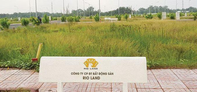 Địa ốc 24h: Qua thời hoàng kim, nhiều dự án đất nền bỏ hoang cho cỏ mọc