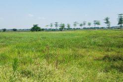 Hà Nội yêu cầu kiểm tra, xử lý 39 dự án bị thu hồi đất