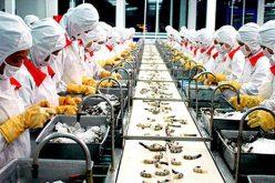 Doanh nghiệp 24h: Thủy sản Minh Phú báo lãi hơn 223 tỷ đồng trong quý III, Beton 6 bị phạt 85 triệu đồng