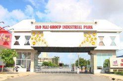 Đánh giá lại khoản đầu tư vào IDI, lợi nhuận 9 tháng của Sao Mai vượt 1.000 tỷ đồng