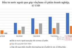 Bất chấp TTCK Việt Nam trồi sụt, 11 tháng vốn FII hơn 7,6 tỷ USD, tăng 44,4%
