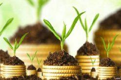 Vượt kế hoạch sau 9 tháng, Vinaconex P&C chuẩn bị trả cổ tức 15% bằng tiền