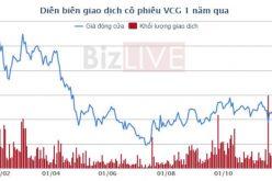 Pyn Elite Fund thoái vốn khỏi Vinaconex, thu về hơn 800 tỷ đồng?