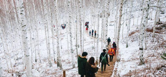 Đến xứ Hàn, thực hiện giấc mơ chạm vào tuyết trắng