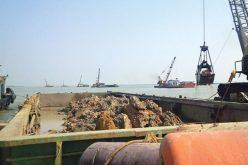 Bắt lỗi Dự án nâng cấp luồng vào cảng Cửa Lò