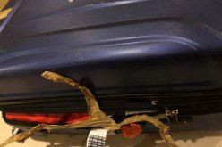 Xuống sân bay Tân Sơn Nhất: Vali bung khóa, mất 4 chai nước hoa; trách nhiệm của ai?