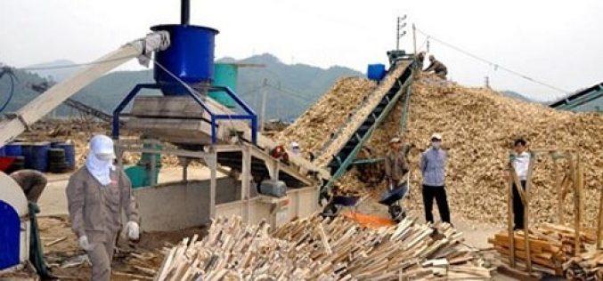 Dự kiến điều chỉnh thuế xuất khẩu dăm gỗ lên 5%