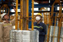 Lợi nhuận quý một của thép Hòa Phát giảm 18,5%