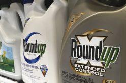 Monsanto lại phải chi hơn 2 tỷ USD vì thuốc diệt cỏ gây ung thư